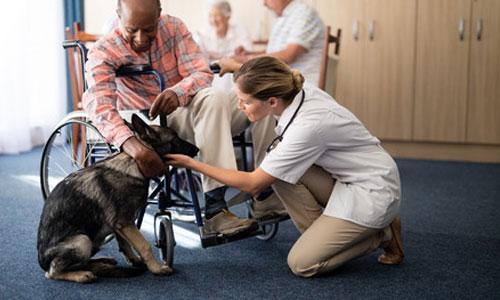 Adopter un animal : une thérapie qui a du chien!