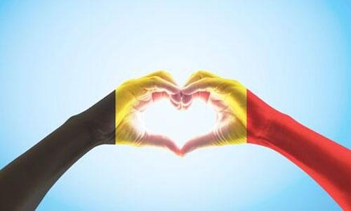 Belgique : droits du handicap inscrits dans la Constitution
