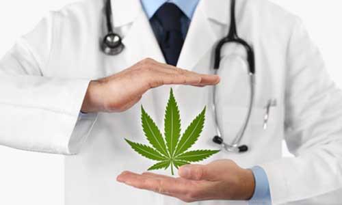 Cannabis médical: les 1ères consultations vont débuter
