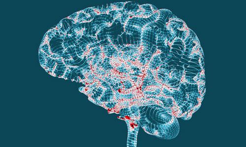 Lésions de la moelle : des aimants régénèrent les neurones ?