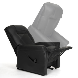 Image Fauteuil Releveur Ontario 1