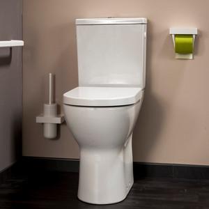 Cuvette WC surélevée (image 1)
